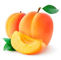 apricot wax