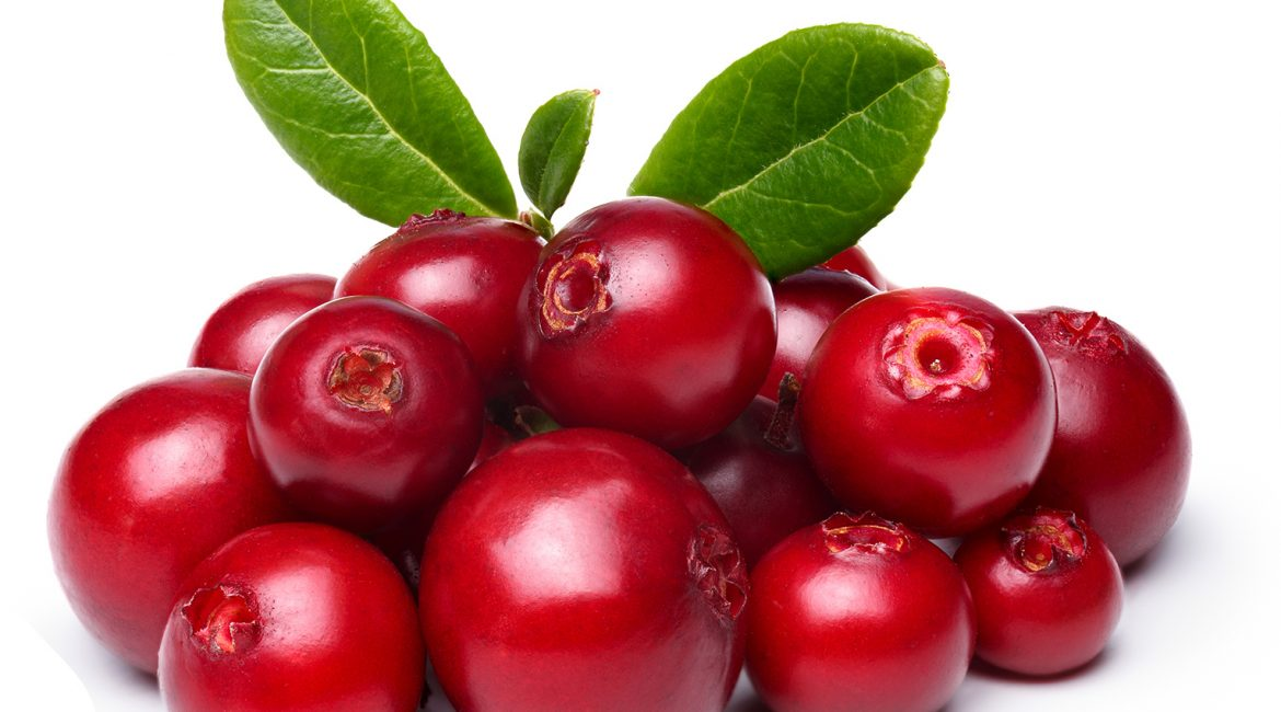 Lipoid Kosmetik – Cranberry for your skin