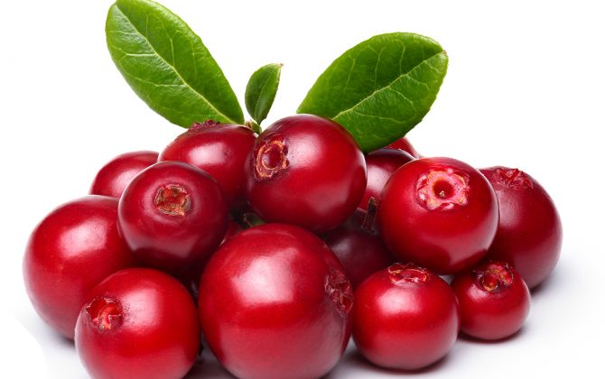 Lipoid Kosmetik – Cranberry for your skin