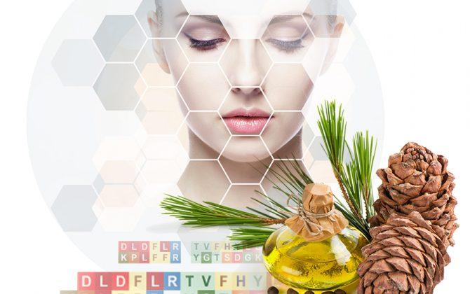 Lipoid Kosmetik: PhytoCodine® & SLM Eco