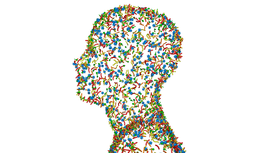 Looking After Your Microbiome